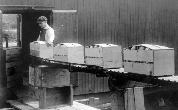 A man placing crates of fruit onto a conveyor belt.