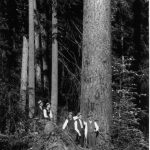 Five Men in Hats Looking Up at the Forest in California in Black and White