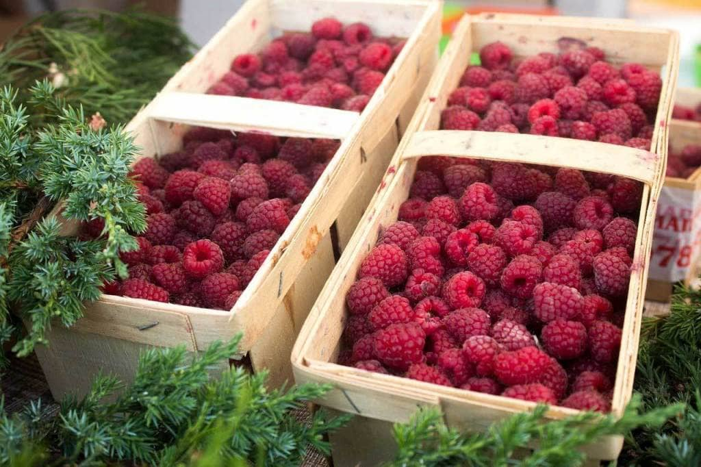Two wooden boxes of raspberries.